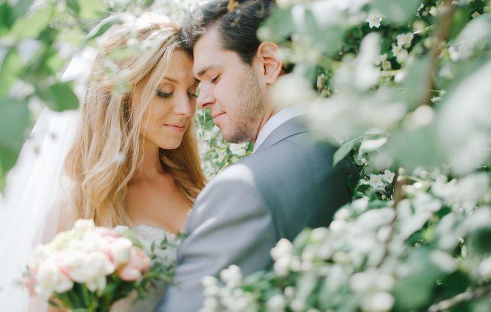 сколько стоит свадьба 2019 8